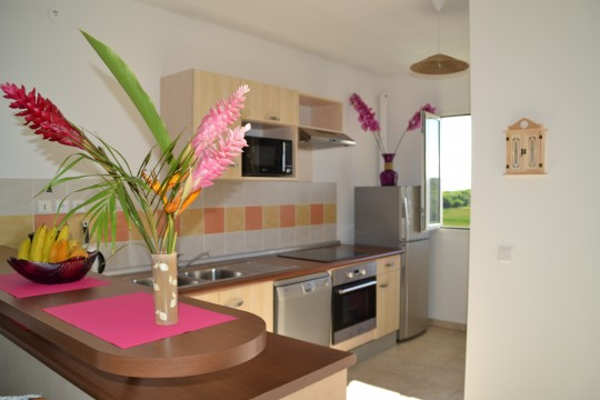 Appartement le crystal saint fran ois guadeloupe bord de mer for Cuisine ouverte guadeloupe
