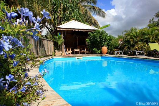 Bungalow Guadeloupe - Ref 1843 - piscine