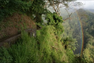 Photo Guyane - chemin des esclaves