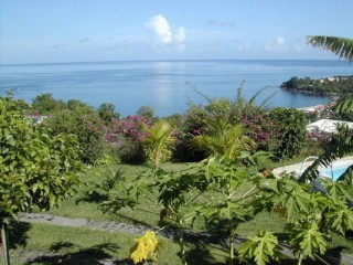 Location Appartement Guadeloupe - vue de la piscine