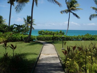 Location Appartement Guadeloupe - Jardin tropical