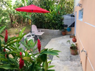 Location Appartement Guadeloupe : internet