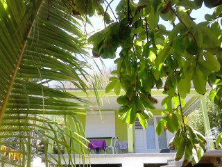 Location Appartement Guadeloupe - villa F2