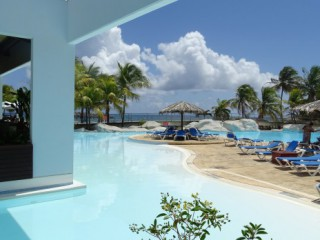 Pelican manganao : Appartement Guadeloupe