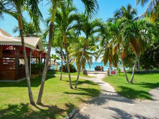 Coin paradis : Appartement Guadeloupe