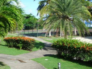 Location Appartement Guadeloupe - tennis
