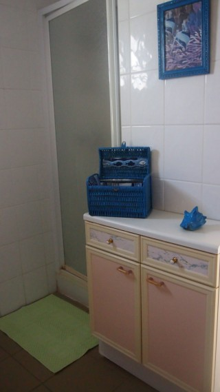 Location Appartement Guadeloupe - douche