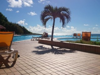 Location Appartement Guadeloupe - 225 farniente au bord de la piscine