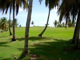 Location Appartement Guadeloupe - golf de saint francois