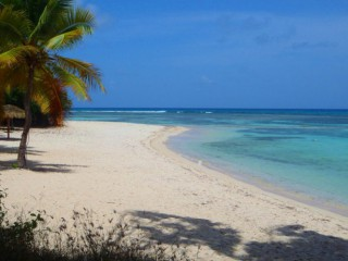 Location Appartement Guadeloupe - La plage principale