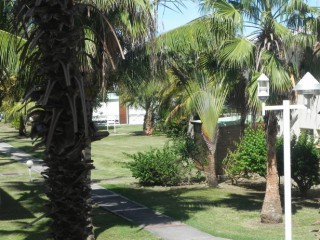 Location Appartement Guadeloupe - parc tropical