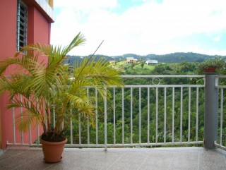 Location Appartement Martinique - Vue terrasse 1