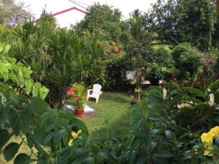 Location vacances Appartement Sainte-Luce: jardin tropical ...<br />