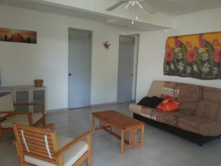 Location Appartement Martinique : climatisation