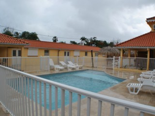 Location Appartement Martinique - piscine de la résidence