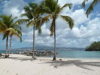 Location Appartement Martinique - plages a 5 minutes a pied