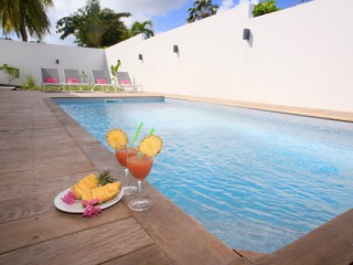 Location Appartement standing Guadeloupe : piscine, clim, internet