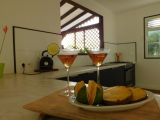 F3 vuemer : Appartement standing Martinique