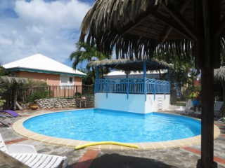 Location Bungalow Guadeloupe - La piscine
