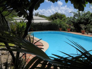 Location Bungalow Guadeloupe : piscine, clim, internet