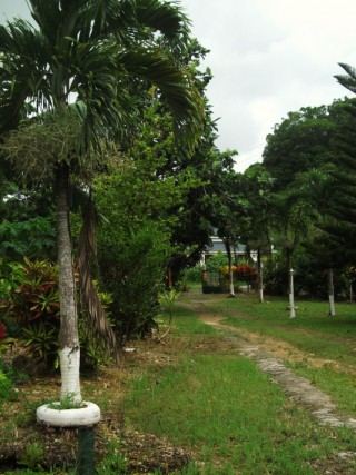 Location Gîte Guadeloupe - Abymes 97139