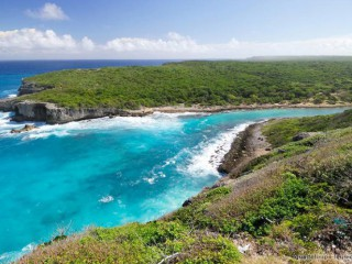 Cattleyah : Line Guadeloupe