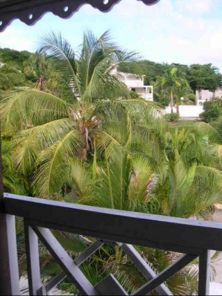 Location Appartement Guadeloupe - Terrasse 2