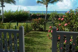 Location Appartement Guadeloupe - vue jardin privatif