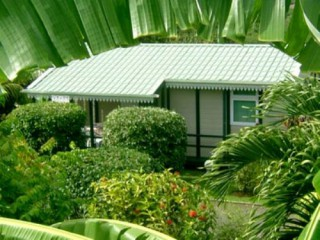 Location Bungalow Guadeloupe - bungalow