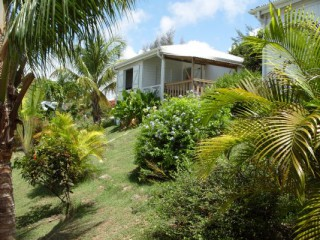 Location Bungalow Guadeloupe - Parc
