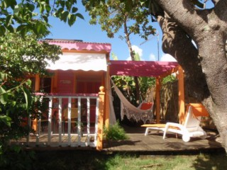 Location vacances Bungalow Sainte-Anne: Bungalow Hibiscus du  Verger de Sainte Anne ...<br />