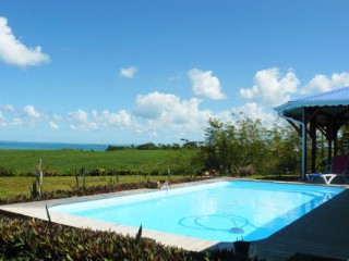 Location Bungalow Guadeloupe - Piscine vue mer