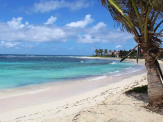Location Studio Guadeloupe : vue mer, climatisation