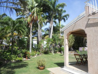 Location Studio Guadeloupe: piscine, climatisation, internet