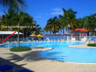 Location Studio Saint-Martin : piscine, clim, internet