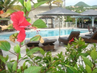 Location Studio Saint-Martin : piscine, climatisation, internet