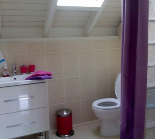 Location Appartement Guadeloupe - S. de bain studio 1