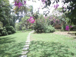 Location Villa Guadeloupe - jardin tropical de 4000m² cloturer