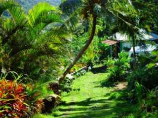 Villa - Bungalow Hotel Pelee Martinique - Location VillaSaint-Pierre4 personnes