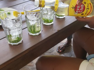 Location Villa Martinique - Mojito party !