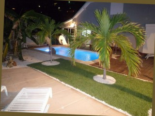Location Villa Saint-Martin : piscine, clim, animaux, internet