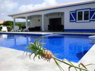 Location Villa prestige Martinique - piscine